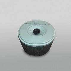 Filtro Aire P607254