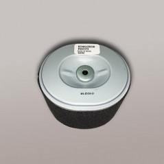 Filtro Aire P607273